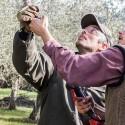 Corso potatura e innesto alberi da frutto 2015