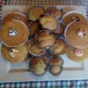 I Muffins di Saltapoggio