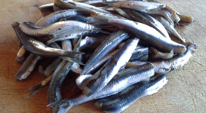 Anchovies, how can I cook you?